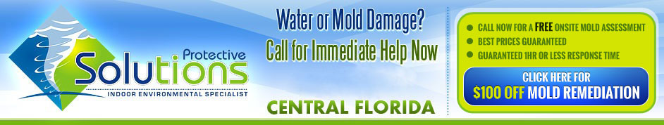 Mold Remediation Orlando, FL | Mold Removal by Protective Solutions